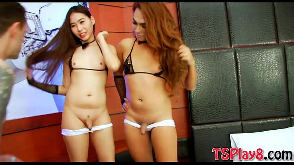 Cutie ladyboys shared a hard cock and banged on the bed