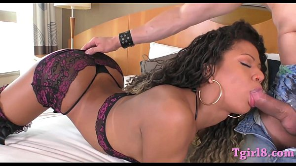 Sultry latin shemale ass fucked bareback in many poses